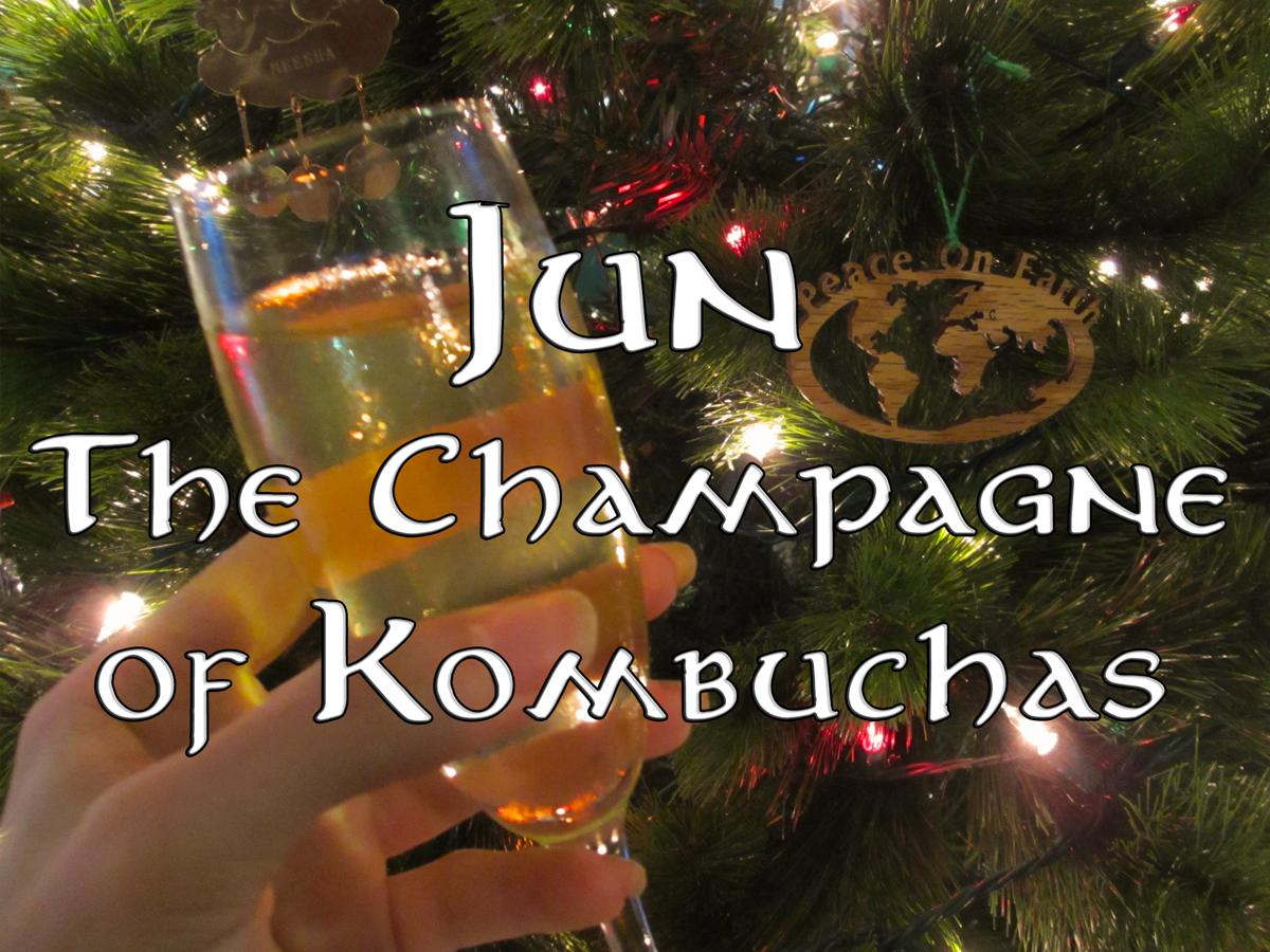 jun-champagne-of-kombuchas-kundalinee.com
